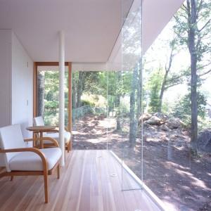 Garden, Window