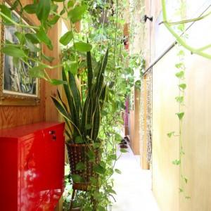 Garden, Entrance