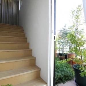 Garden, Terrace, Stairs
